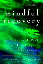 Mindful Recovery by Thomas Bien