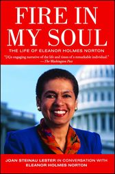 Fire in My Soul by Joan Steinau Lester