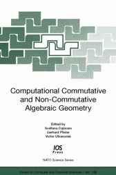 Computational Commutative and Non-Commutative Algebraic Geometry by S. Cojocaru