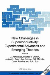 New Challenges in Superconductivity: Experimental Advances and Emerging Theories by J. Ashkenazi