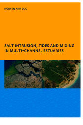 Salt Intrusion, Tides and Mixing in Multi-Channel Estuaries by Anh Duc Nguyen