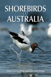 Shorebirds of Australia by Andrew Geering