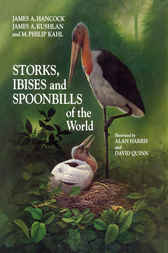 Storks, Ibises and Spoonbills of the World by James Hancock