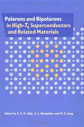 Polarons and Bipolarons in High-Tc Superconductors and Related Materials by E. K. H. Salje