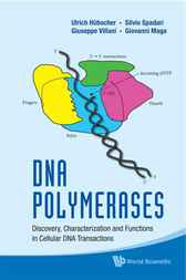DNA Polymerases by Ulrich Hubscher