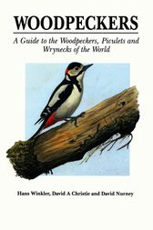 Woodpeckers by Hans Winkler