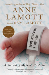 Some Assembly Required by Anne Lamott