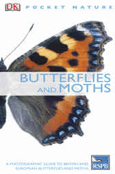 Butterflies and Moths by Dorling Kindersley Ltd