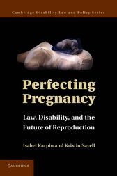 Perfecting Pregnancy by Isabel Karpin