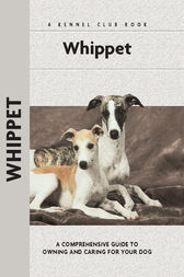Whippet by Juliette Cunliffe