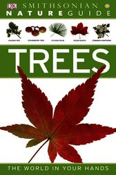 Nature Guide: Trees