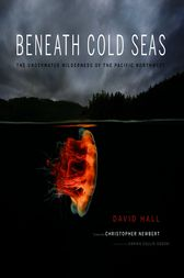 Beneath Cold Seas by David Hall
