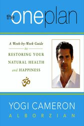 The One Plan by Yogi Cameron Alborzian