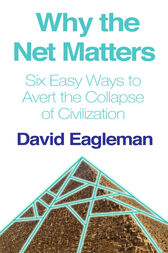 Why the Net Matters by David Eagleman