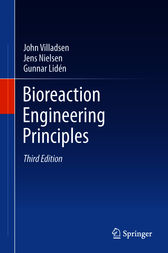 Bioreaction Engineering Principles by John Villadsen