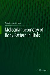 Molecular Geometry of Body Pattern in Birds by Antonio Lima-de-Faria