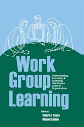 Work Group Learning by Valerie Sessa