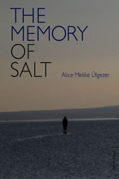 The Memory of Salt by Alice Melike Ulgezer