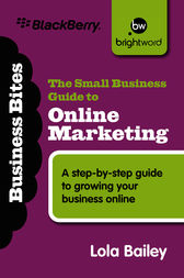 The Small Business Guide to Online Marketing by Bailey Lola