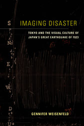 Imaging Disaster
