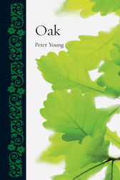 Oak by Peter Young