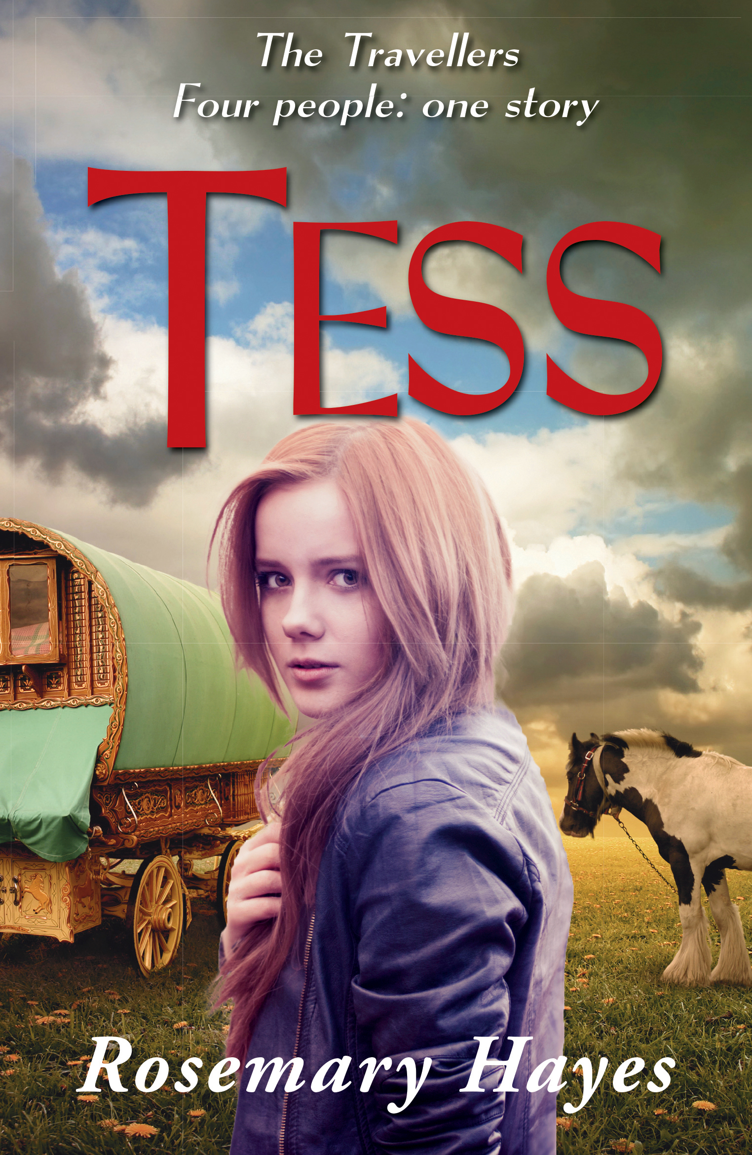 essays on tess of the dubervilles