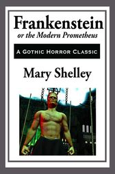 an analysis of the dangers of technology in frankenstein by mary shelley Literature and technology english 181 at emory university  the power of nature mary shelley uses frankenstein and his trials to show how detrimental defying.