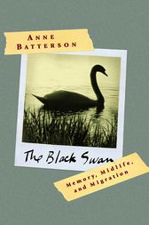 The Black Swan by Anne Batterson
