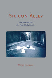Silicon Alley by Michael Indergaard
