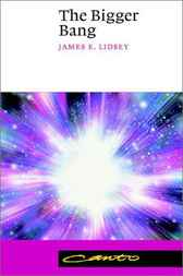 The Bigger Bang by James E. Lidsey