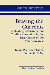 Braving the Currents by Tamra Pearson d'Estree
