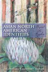 Asian North American Identities by Eleanor Ty