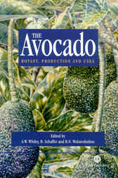 The Avocado by A.W. Whiley
