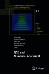 QCD and Numerical Analysis III