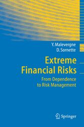 Extreme Financial Risks by Yannick Malevergne