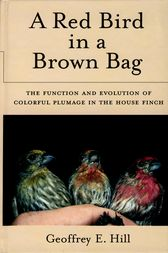 A Red Bird in a Brown Bag by Geoffrey E. Hill