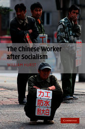 The Chinese Worker after Socialism by William Hurst
