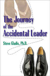 Journey of the Accidental Healer by Stephen D. Gladis