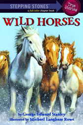 Wild Horses by George Edward Stanley