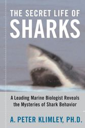 The Secret Life of Sharks by A. Peter Klimley