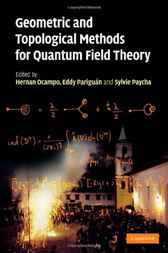 Geometric and Topological Methods for Quantum Field Theory by Hernan Ocampo