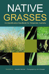 Native Grasses by Meredith Mitchell