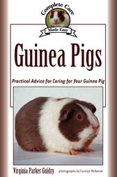 Guinea Pigs by Virginia Parker Guidry