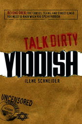 Talk Dirty Yiddish by Ilene Schneider