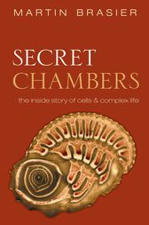 Secret Chambers by Martin Brasier