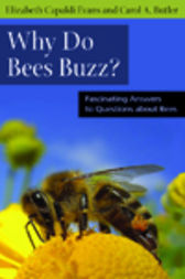 Why Do Bees Buzz? by Elizabeth Evans