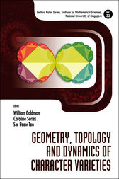 Geometry, Topology and Dynamics of Character Varieties by William Goldman