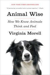 Animal Wise by Virginia Morell
