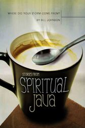 Where Did Your Storm Come From?: Stories from Spiritual Java