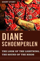 The Look Of The Lightning, The Sound Of The Birds by Diane Schoemperlen